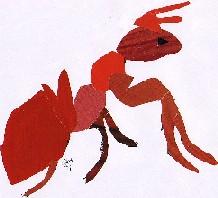 Formica rufa-Southern wood ant-formiga roxa
