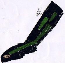 Vipera latastei-Víbora fociñuda-Lataste's Viper