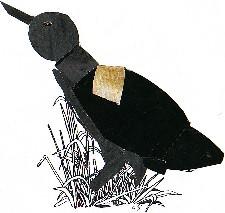 BOTAURUS STELLARIS-Abetouro común-Great Bittern