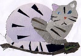 Felis silvestris-GATO MONTÉS-wild cat