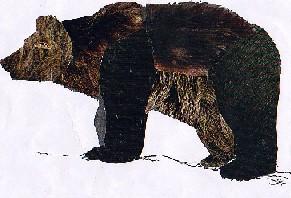 URSUS ARCTOS-Oso Pardo-Brown Bear.